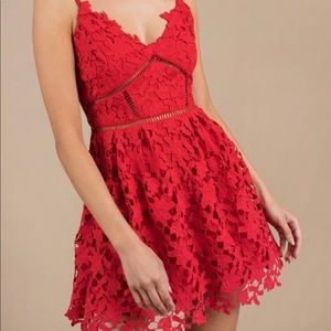 Tobi Marie Lace Skater Dress